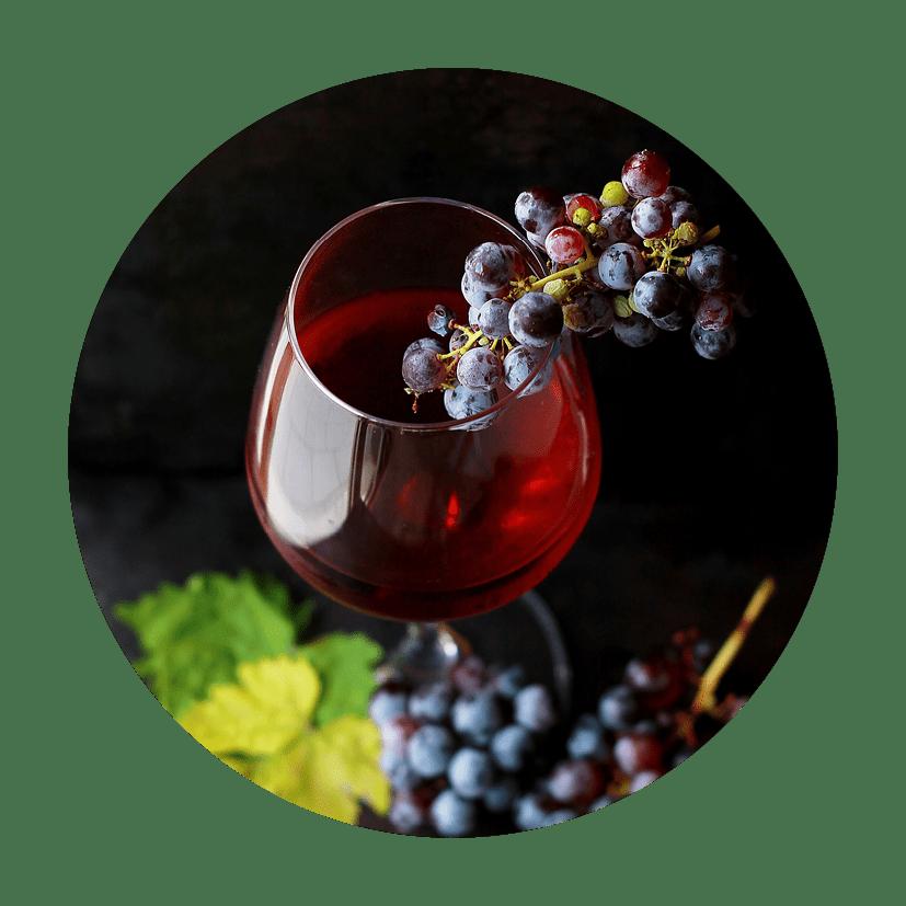 Wine Service Como